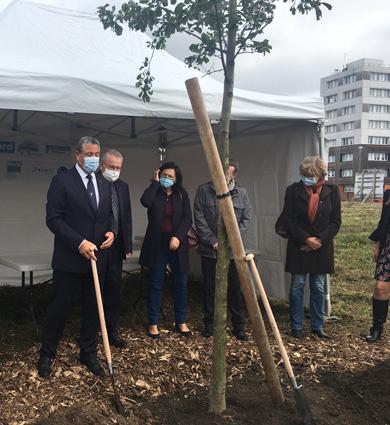 Image for Résidence seniors de Beuvrages : bientôt la construction !